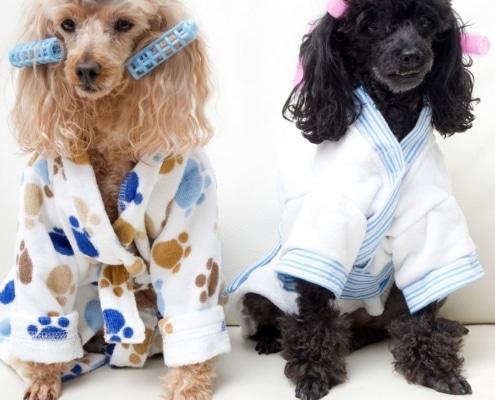 eco kids bathrobe